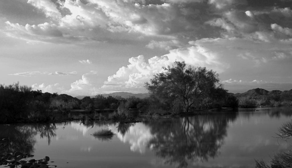 IMAGE: http://dngphotoandfilm.files.wordpress.com/2012/08/reflectionsbwresized.jpg?w=1024&h=590